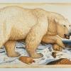 Walton Ford, Novaya Zemlya Still Life, 2006