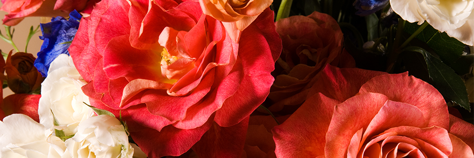 34th Annual Fine Art & Flowers, May 1 - 3, 2015, Wadsworth Atheneum Museum of Art