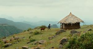 Art & Film: Lamb