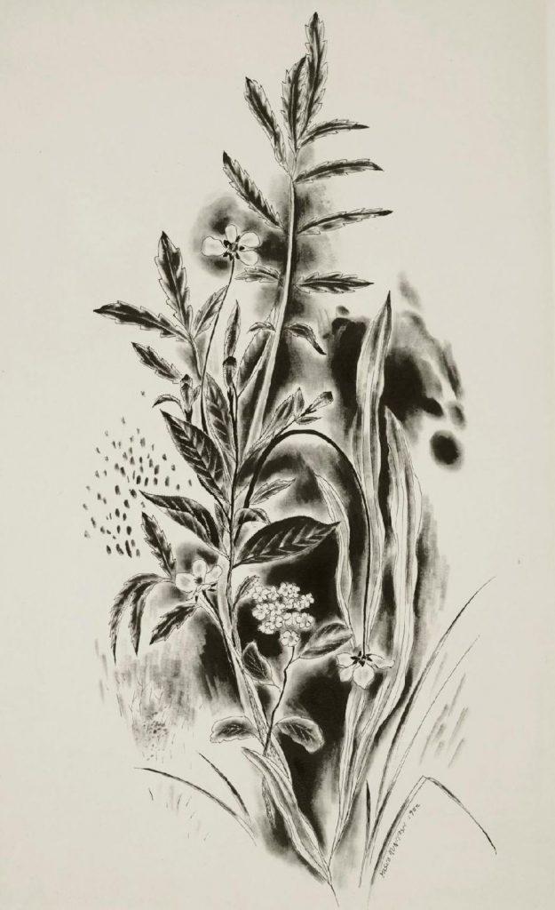 Yasuo Kuniyoshi,Wild Flowers(detail)